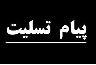 وزیر کار و رفاه اجتماعی درگذشت نماینده مردم ایرانشهر را تسلیت گفت