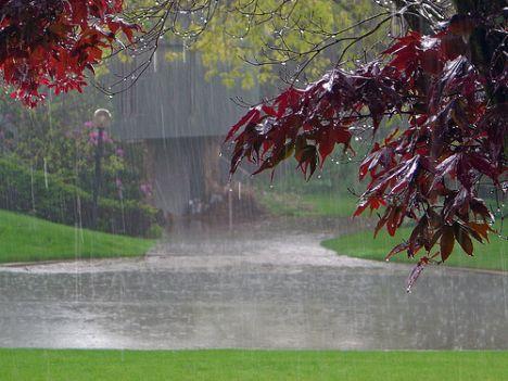 رشد 48 درصدی بارش ها در استان مرکزی